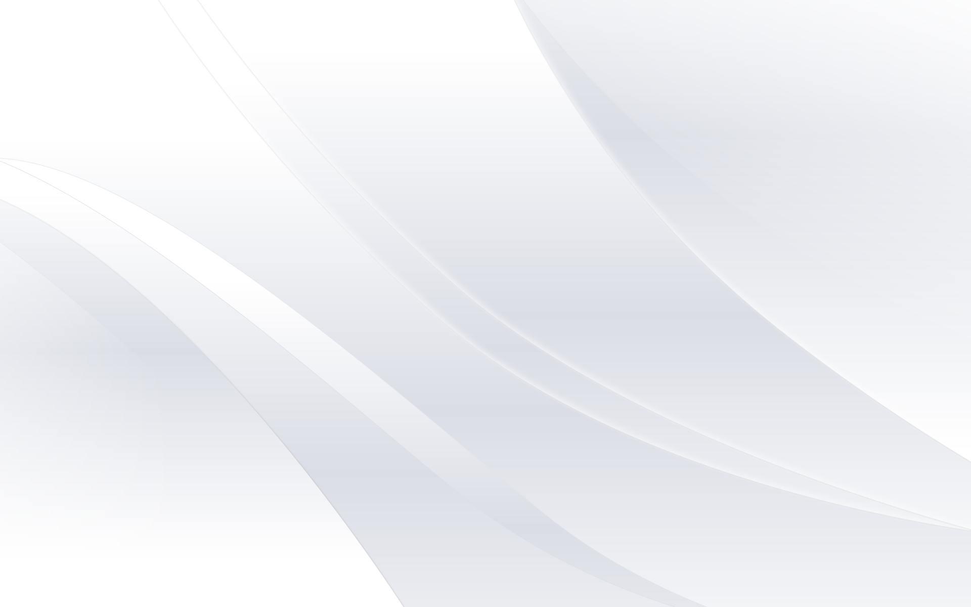 white bg 2
